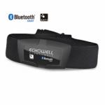 Sensor Echowell Monitor Cardíaco BLUETOOTH DMH30 ANT+
